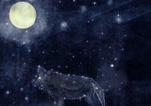 derwolfunddermond